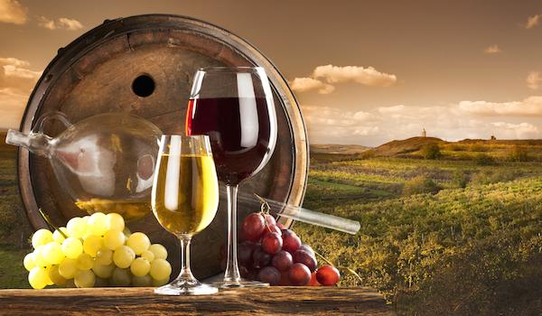 生ワインを飲んでみよう!楽しく選ぶ5つのポイント