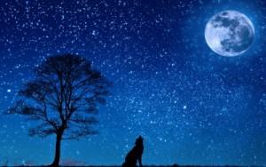 月を狙って撃て!たとえ撃ち損じてもどこかの星に当たる可能性がある