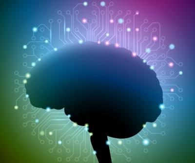 脳は一度にたくさんのことを処理できない