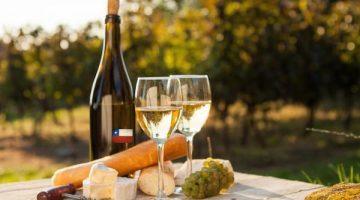 安くて美味しいワイン!コスパの高いチリ産白ワイン5選