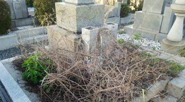 『墓じまい』~祖先のお墓と祭祀承継問題の対策方法と注意点
