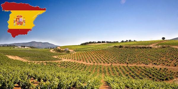 お手頃価格のスペインワイン!おすすめ赤ワイン5選