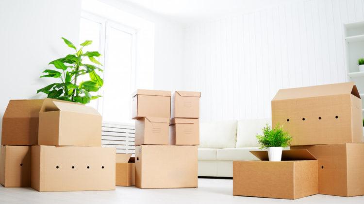 断捨離をより効果的に実践するの5つの注意事項