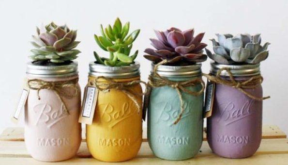 室内で気軽に楽しめる、かわいい多肉植物の育て方