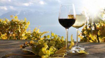 デザートワインの選び方を知って食事をさらに楽しむコツ